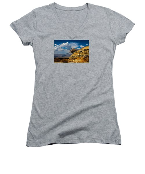 The Hilltop Women's V-Neck