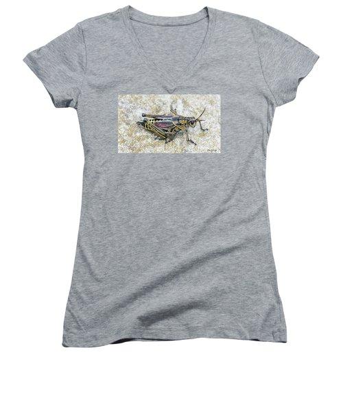 The Hopper Grasshopper Art Women's V-Neck T-Shirt (Junior Cut) by Reid Callaway