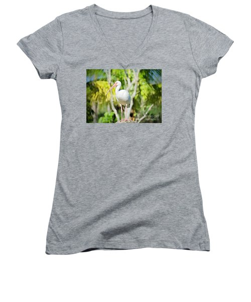The Ibis Pose Women's V-Neck (Athletic Fit)