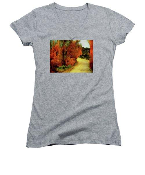 The Journey Home Women's V-Neck T-Shirt (Junior Cut) by Lenore Senior