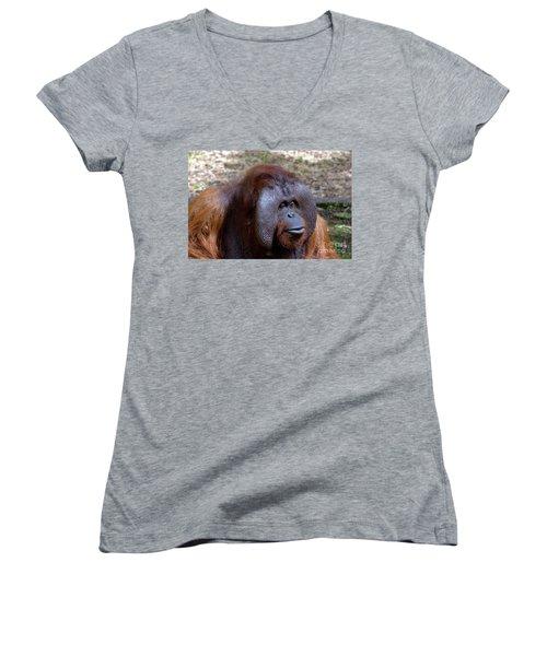 The Jungle V.i.p. Women's V-Neck T-Shirt (Junior Cut)