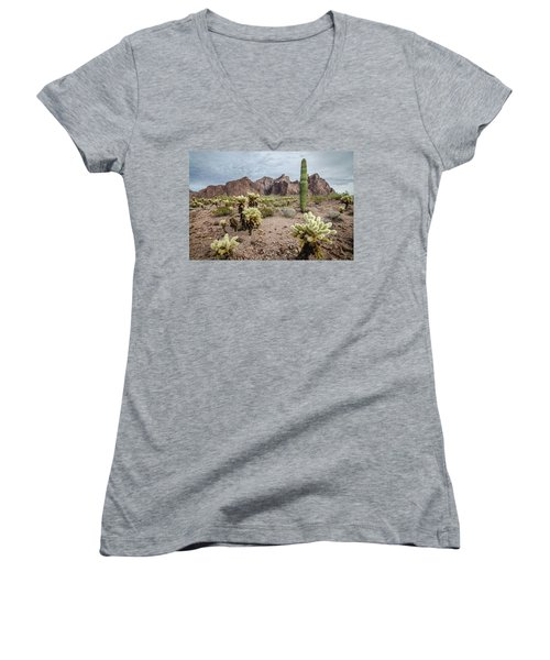 The King Of Arizona National Wildlife Refuge Women's V-Neck