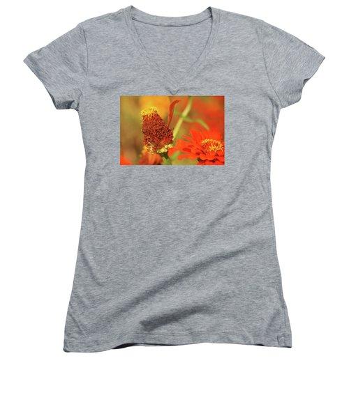 The Last Petal Women's V-Neck T-Shirt