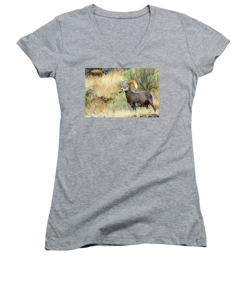 The Loner II Women's V-Neck (Athletic Fit)