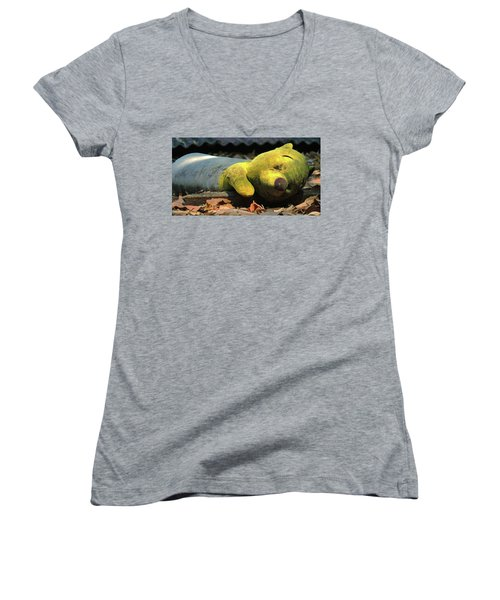 The Lonely Teddy Bear Women's V-Neck