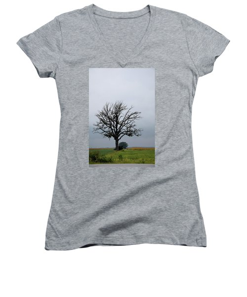 The Lonely Tree Women's V-Neck (Athletic Fit)