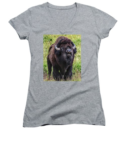 The Mating Call Women's V-Neck (Athletic Fit)