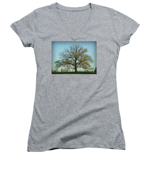 The Mighty Oak In Spring Women's V-Neck