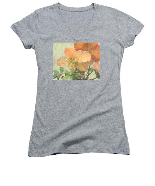 The Mystical Energy Of Nature Women's V-Neck T-Shirt