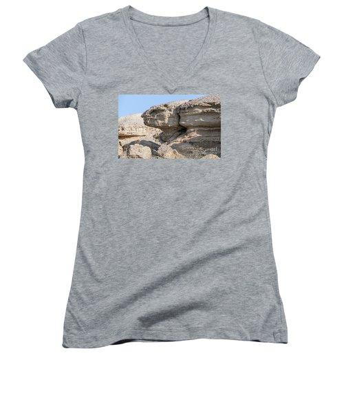 The Old Gatekeeper Women's V-Neck T-Shirt (Junior Cut) by Arik Baltinester