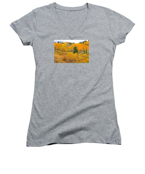 The One That Stands Out  Women's V-Neck T-Shirt