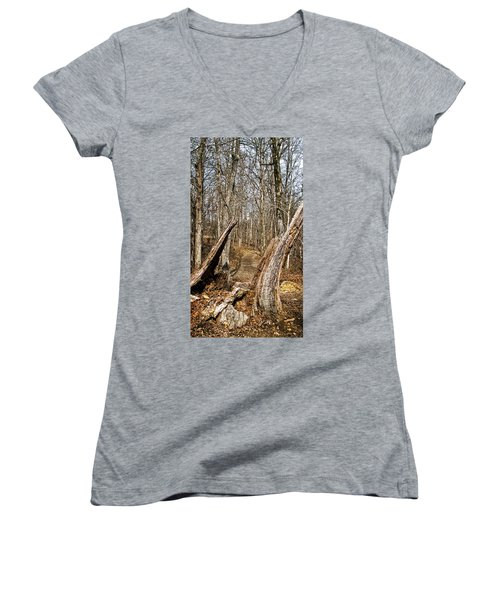 The Path Through The Woods Women's V-Neck