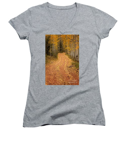 The Pathway To Fall Women's V-Neck T-Shirt (Junior Cut) by Ronda Kimbrow