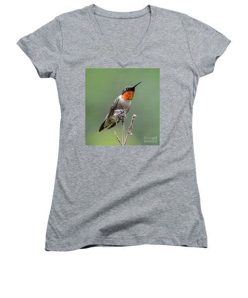 The Perfect Lookout Women's V-Neck T-Shirt (Junior Cut) by Amy Porter