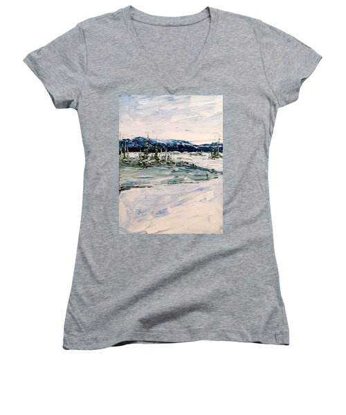 The Pond - Winter Women's V-Neck T-Shirt