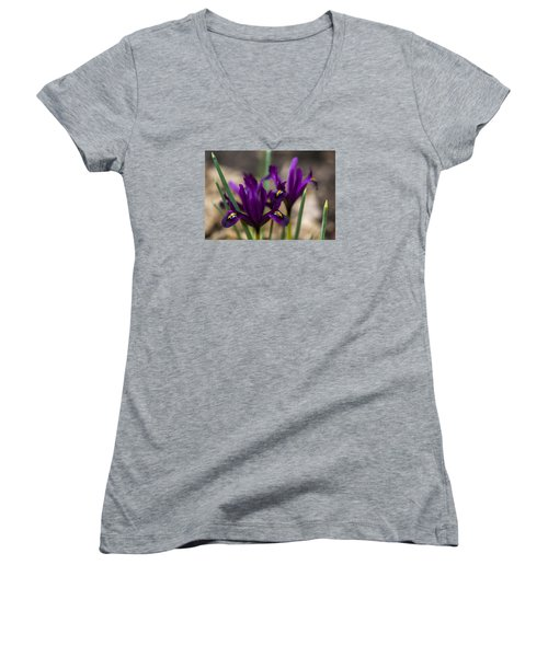 The Rise Of The Early Royal Dwarf Iris Women's V-Neck T-Shirt (Junior Cut) by Dan Hefle