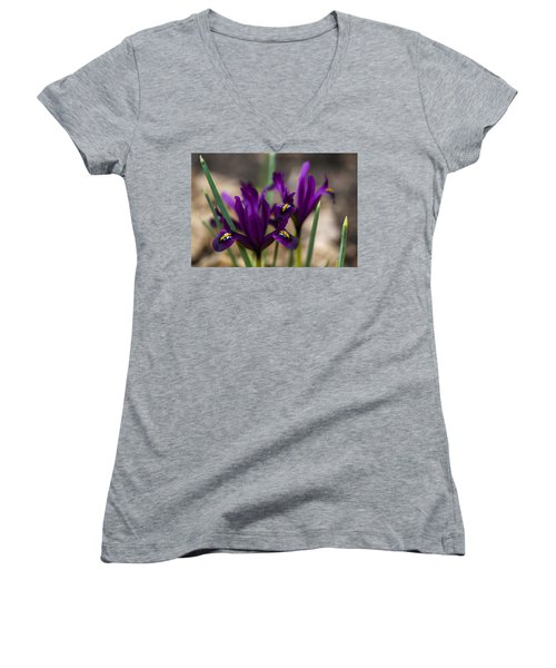 The Rise Of The Early Royal Dwarf Iris Women's V-Neck