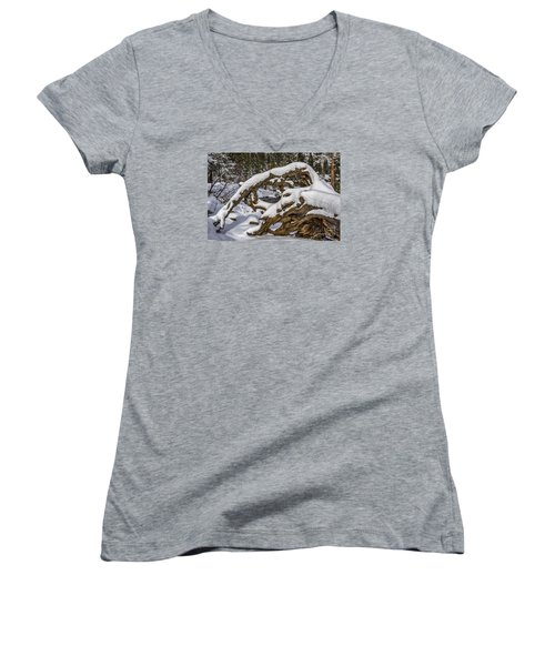 The Roots Of Winter Women's V-Neck T-Shirt (Junior Cut) by Mitch Shindelbower
