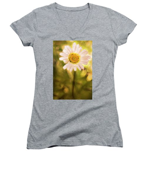 The Secret Language Of Flowers Women's V-Neck T-Shirt