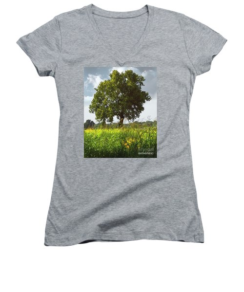 The Shade Tree Women's V-Neck (Athletic Fit)