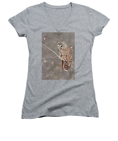 The Silent Hunter Women's V-Neck T-Shirt (Junior Cut) by Mircea Costina Photography