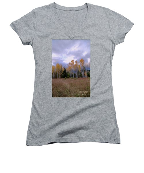 The  Song Of The Aspens 2 Women's V-Neck T-Shirt (Junior Cut) by Victor K