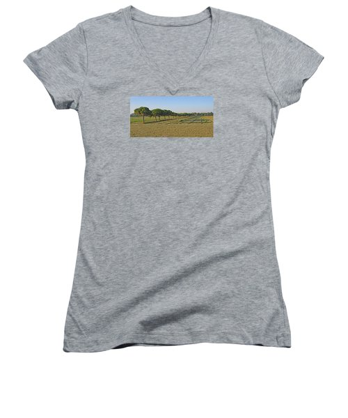 The Source Of Pine Nuts  Women's V-Neck T-Shirt (Junior Cut) by Allan Levin