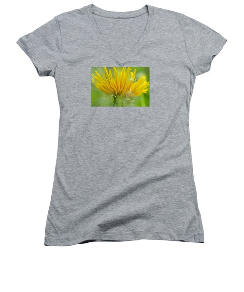 The Sow And Silk Women's V-Neck T-Shirt