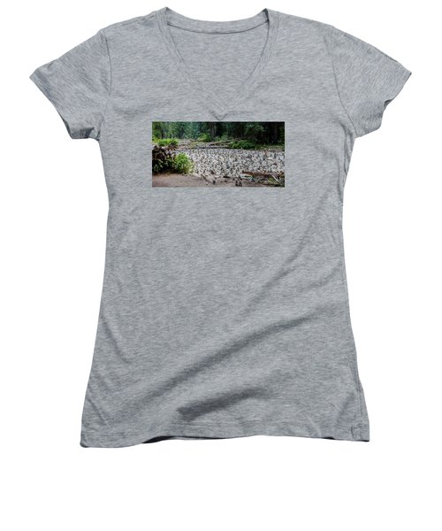 Women's V-Neck T-Shirt featuring the photograph The Spirit Crossing by Fran Riley