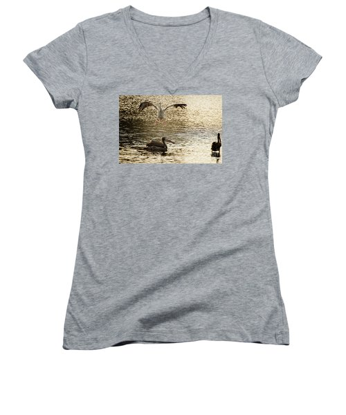 The Spot-billed Pelican Or Grey Pelican  Pelecanus Philippensis  Women's V-Neck (Athletic Fit)