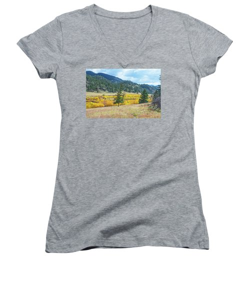 The Sublime Beauty That Ensorcells The Soul.  Women's V-Neck (Athletic Fit)