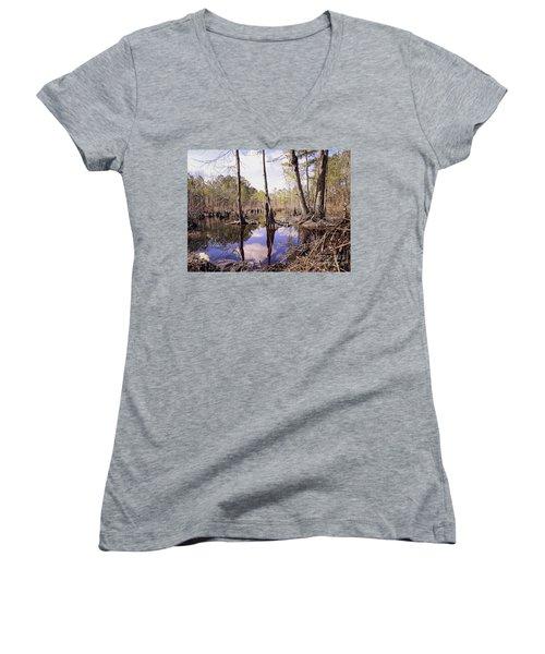 The Swamp Women's V-Neck T-Shirt (Junior Cut) by Melissa Messick