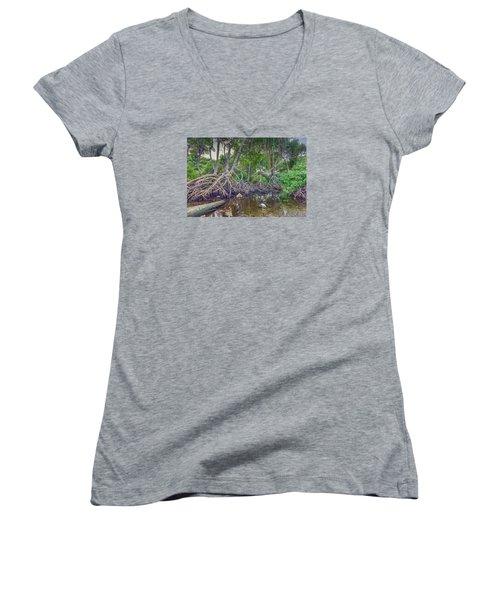 The Swamp Women's V-Neck T-Shirt (Junior Cut) by Nadia Sanowar