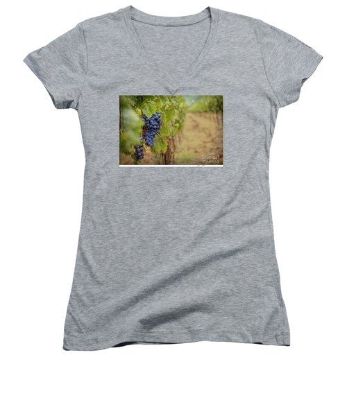 The Vineyard Women's V-Neck (Athletic Fit)