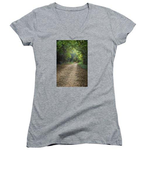 The Winding Path Women's V-Neck T-Shirt (Junior Cut)
