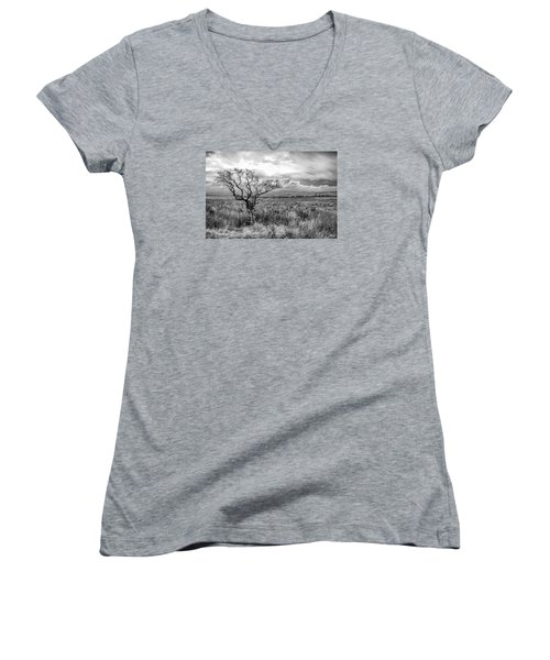The Windswept Tree Women's V-Neck (Athletic Fit)