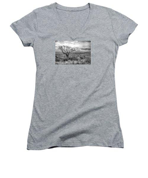The Windswept Tree Women's V-Neck T-Shirt