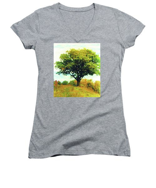 The Witness Tree Women's V-Neck (Athletic Fit)
