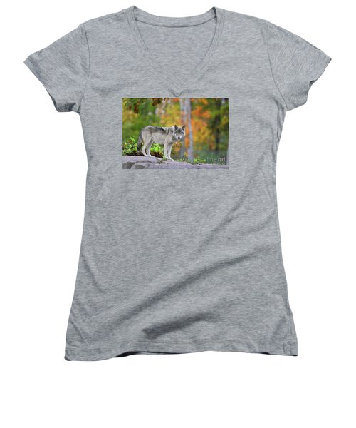 The Wolf. Women's V-Neck (Athletic Fit)