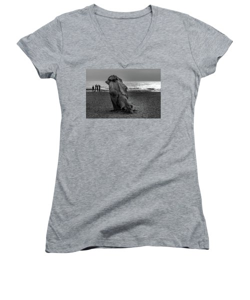 The Youth And The Horsehead Women's V-Neck