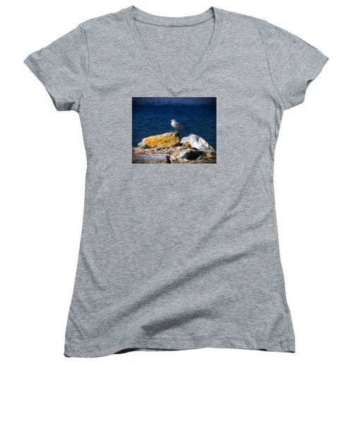 This Gull Has Flown Women's V-Neck T-Shirt (Junior Cut) by John Freidenberg