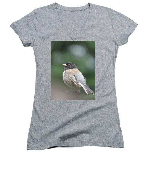 This Little Bird 2 Women's V-Neck T-Shirt (Junior Cut) by Brooks Garten Hauschild
