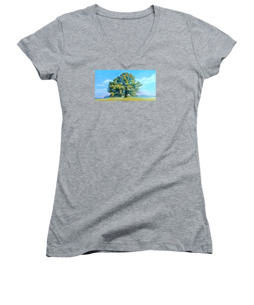Thomas Jefferson's White Oak Tree On The Way To James Madison's For Afternoon Tea Women's V-Neck T-Shirt (Junior Cut) by Catherine Twomey