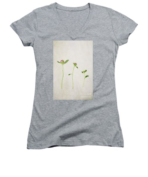 Three Buds Women's V-Neck T-Shirt (Junior Cut) by Stephanie Frey