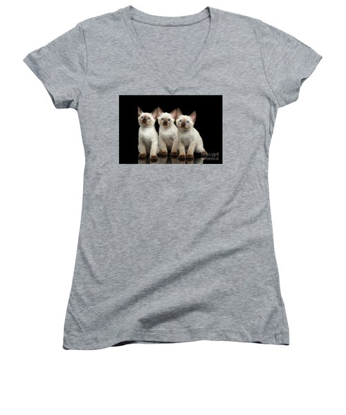 Three Kitty Of Breed Mekong Bobtail On Black Background Women's V-Neck (Athletic Fit)
