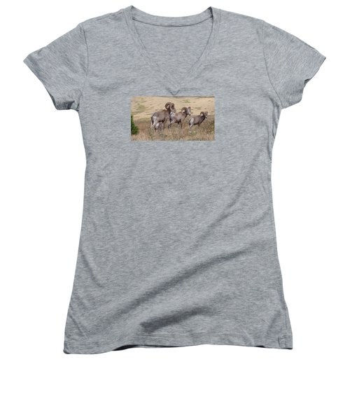Women's V-Neck T-Shirt featuring the photograph Three Of A Kind by Fran Riley
