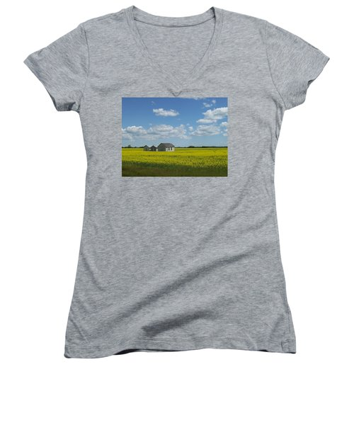 Women's V-Neck T-Shirt (Junior Cut) featuring the photograph Three Of A Kind by Mary Mikawoz