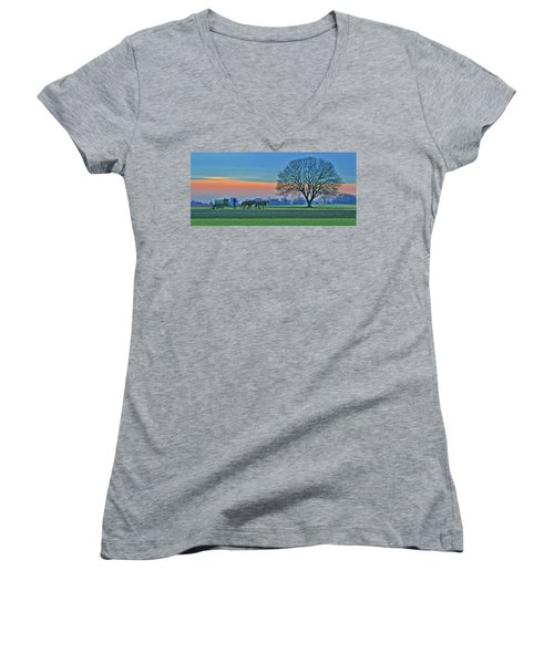 Through The Fields Women's V-Neck T-Shirt