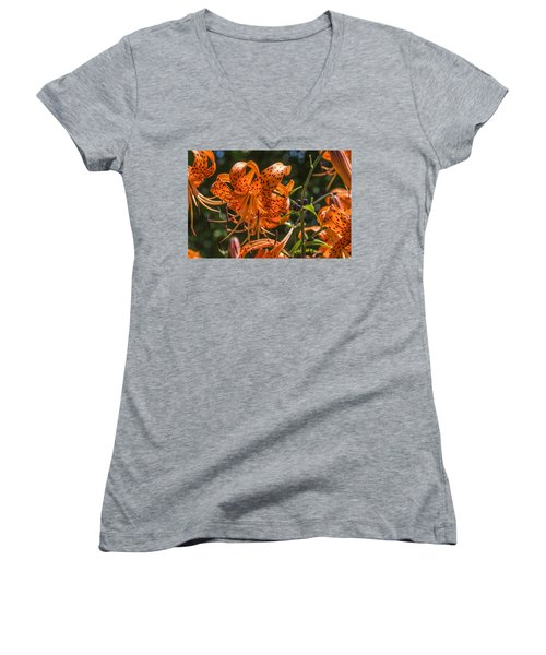 Tiger Lilies In The Sun Women's V-Neck