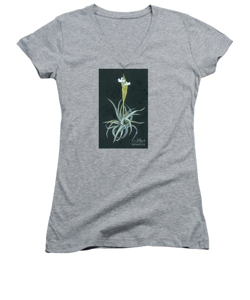 Tillandsia Diaguitensis Women's V-Neck (Athletic Fit)